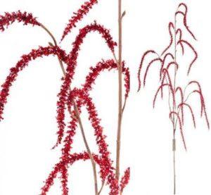 Gałązka roślinna Aluro